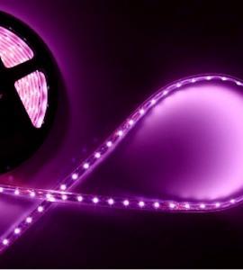0.1.2 Светодиодная лента пурпурного свечения 3528, IP33 (120 диодов на метр)